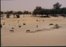vedere de la un hotel in Timbuktu