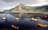 Bleik Harbour