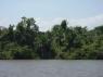 Fluviul Orinoco