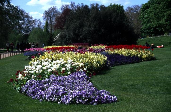 foto Chelsea Flower Show