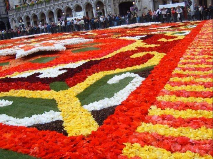 foto Covorul de Flori din Bruxelles (Flower carpet - Brussels)
