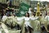 Festivalul Sfantului Patrick (St. Patrick's Festival)