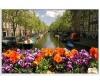 sejur Olanda - Hotel City Garden