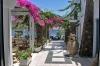 sejur Grecia - Hotel Afroditi Venus
