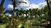 Hotel Habitation Grand Anse