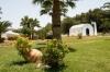 sejur kresten royal villas & spa 5*