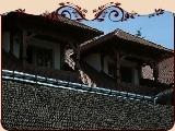 Pensiunea Casa Iurca De Calinesti
