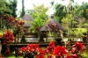 last minute Indonezia / Bali