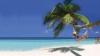 ~SUPER OFERTA!~ REPUBLICA DOMINICANA:PUNTA CANA/29.08/ 7 NOPTI de la 1390 EURO/PERS/SEJUR