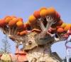 Adrenalina, fantezie si aventura in cel mai mare parc de distractii din Italia! Gardaland®