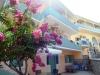 OFERTA SPECIALA HOTEL OLIVE TREE 3*- LEFKADA