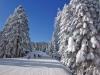 Super Revelion in Bulgaria la Borovets - 30.12 - 04.01.2017