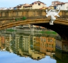 Oferta speciala 4 nopti la FLORENTA cu zbor Blue Air din Bucuresti la 175 euro